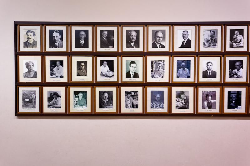 http://mattharveyphotography.com/files/gimgs/6_museum.jpg